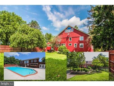 Single Family Home For Sale: 490 Siegfriedale Road