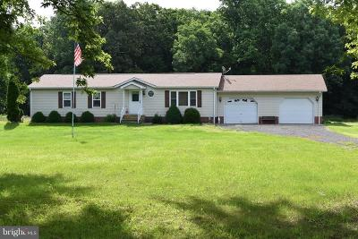 Marydel Single Family Home For Sale: 18155 Templeville Road
