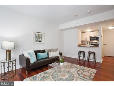 Rittenhouse Square Condo For Sale: 219-29 S 18th Street #814