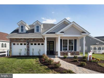 Lititz Single Family Home For Sale: 85 Constitution Drive