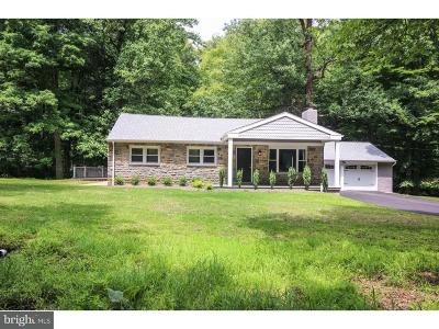 Chadds Ford Single Family Home For Sale: 220 Chandler Road