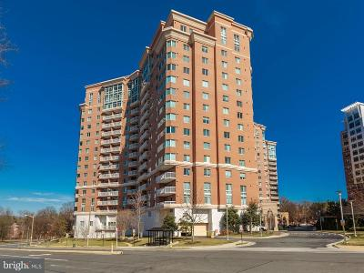 Alexandria Condo For Sale: 3101 Hampton Drive N #815