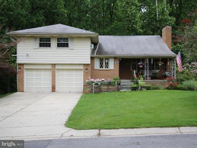 Silver Spring Single Family Home For Sale: 10846 Childs Street