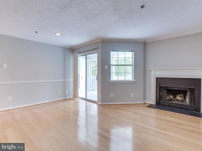 Mclean Single Family Home For Sale: 1504 Lincoln Way #400