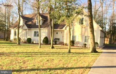 Georgetown Single Family Home For Sale: 28806 Conaway Road