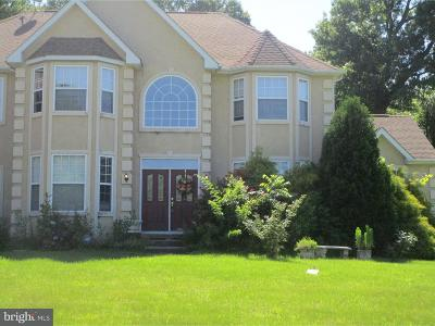 Swedesboro Single Family Home Under Contract: 14 Amethyst Court