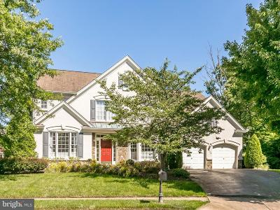 Falls Church Single Family Home For Sale: 2379 Whitestone Hill Court