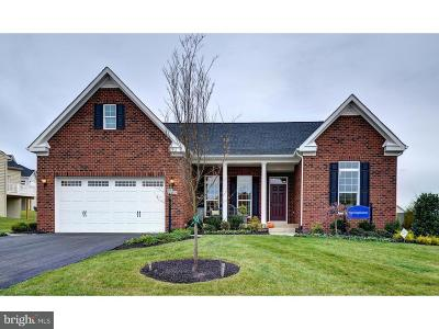 Warminster Single Family Home For Sale: 1001 Domino Lane