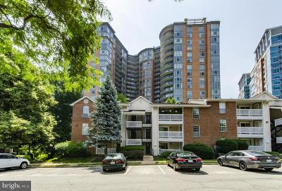 McLean Condo For Sale: 1517 Lincoln Way #204