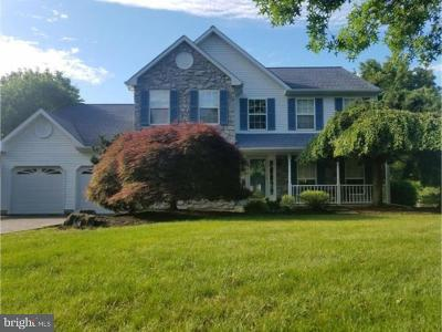 Doylestown Single Family Home For Sale: 20 Mystic View Lane