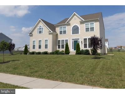 Middletown Single Family Home For Sale: 1004 Camelot Drive