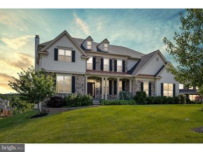 West Chester Single Family Home For Sale: 164 Pratt Lane