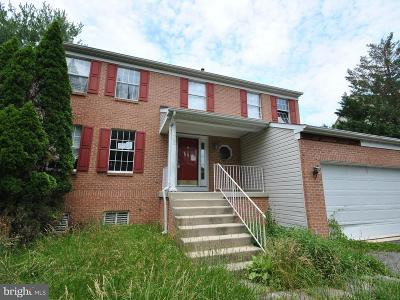Bowie, Upper Marlboro Single Family Home For Sale: 13202 Muscovy Court