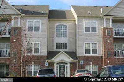 Odenton Single Family Home For Sale: 2499 Amber Orchard Court E #102
