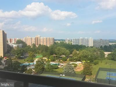 Alexandria Rental For Rent: 307 Yoakum Parkway #1017