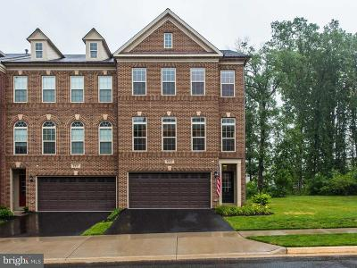 Haymarket VA Townhouse For Sale: $564,990