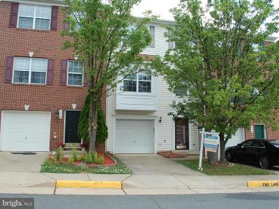 Leesburg Townhouse For Sale: 416 Ginkgo Terrace NE