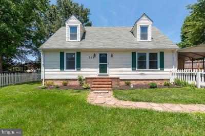 Fredericksburg Single Family Home For Sale: 317 Burman Lane