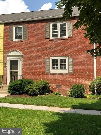 Chevy Chase Condo For Sale: 6620 Hillandale Road #61
