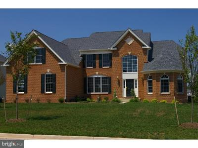 Kent County, New Castle County, Sussex County, KENT County Single Family Home For Sale: 111 Odyssey Drive