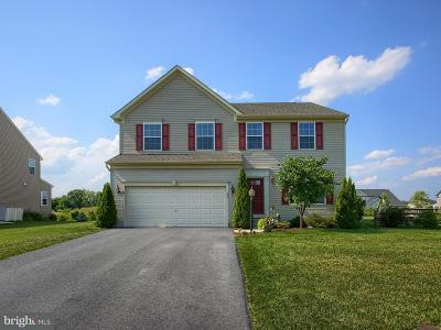 Cumberland County Single Family Home For Sale: 209 Berkshire Drive