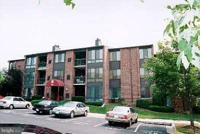 Washington County, Montgomery County, Fairfax County Rental For Rent: 18141 Chalet Drive #202