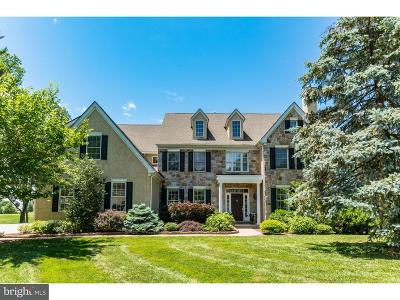 Bryn Mawr Single Family Home For Sale: 672 Jefferson Road