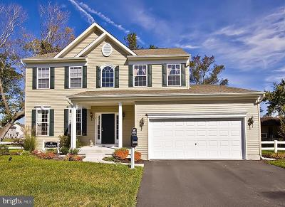 Dorchester County Single Family Home For Sale: 146 Regulator Dr No Drive