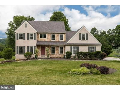 Pottstown Single Family Home For Sale: 111 Crestview Circle