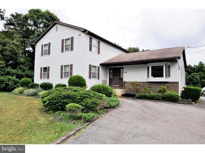 Franklinville Commercial For Sale: 1046 Williamstown Road