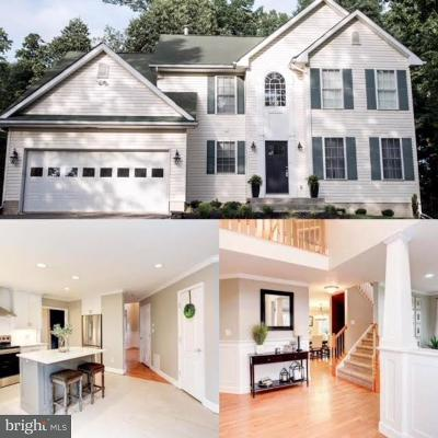 Frederick County Single Family Home For Sale: 10732 Liberty Road
