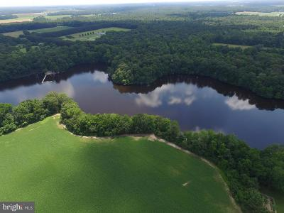 Caroline County Farm For Sale: 8151 Harmony Road