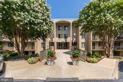 Bethesda Condo For Sale: 7425 Democracy Boulevard #207
