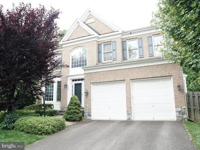 Falls Church Single Family Home For Sale: 2226 Great Falls Street