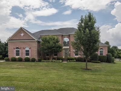 Cockeysville Single Family Home For Sale: 859 Boxer Hill Road