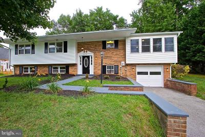 Mechanicsville Single Family Home For Sale: 35771 Aviation Yacht Club Road