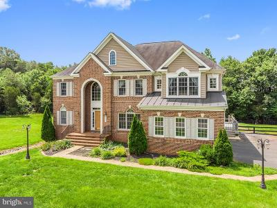 Fauquier County Single Family Home For Sale: 5317 Ambler Court