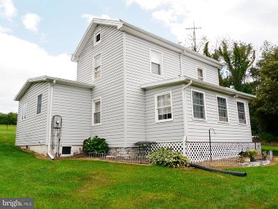 Quicksburg Single Family Home For Sale: 351 Apple Tree Lane