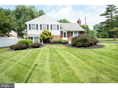 Southampton Single Family Home For Sale: 424 New Road