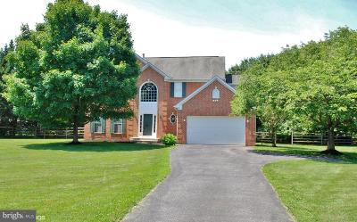 Gaithersburg Single Family Home For Sale: 19404 Haven White Court
