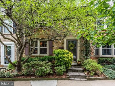 Annandale, Falls Church Townhouse For Sale: 295 Gundry Drive