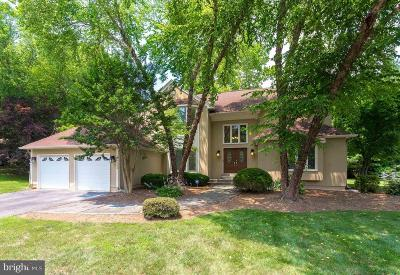 Lorton Single Family Home For Sale: 9108 Meadowcreek Lane