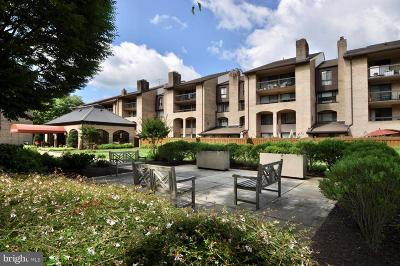 Rockville Condo For Sale: 11410 Strand Drive #R-005