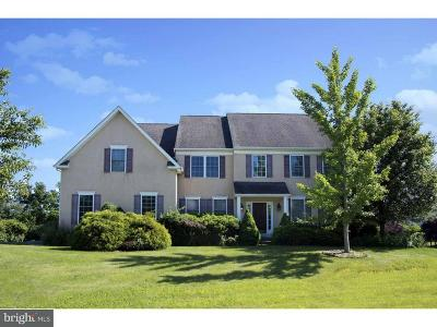 Collegeville Single Family Home For Sale: 7001 Pleasant View Circle