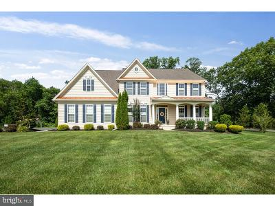 Franklinville Single Family Home For Sale: 129 Peachtree Drive