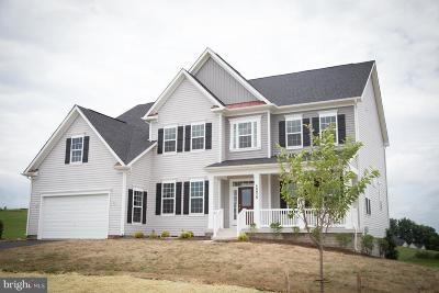 Leesburg Single Family Home For Sale: Erin's View Court
