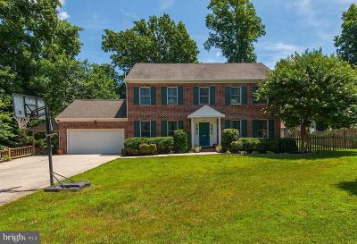 Sterling Single Family Home For Sale: 20316 Broad Run Drive