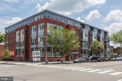 Capitol Hill Condo For Sale: 900 11th Street SE #403