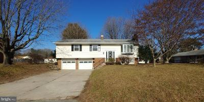 Milford Single Family Home For Sale: 503 Reed Road