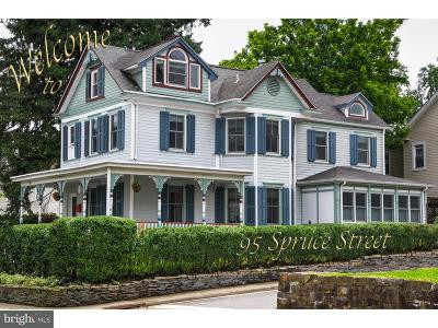 Princeton Single Family Home For Sale: 95 Spruce Street